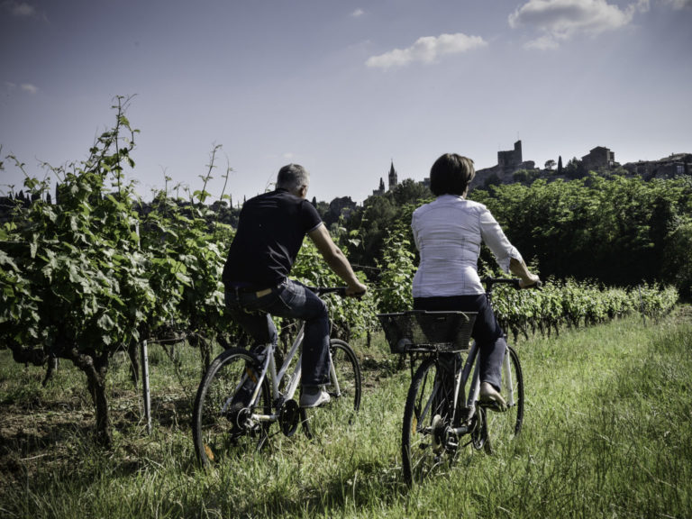 Brunch dans les vignes