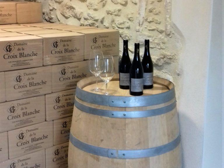 Initiation à la dégustation des vins